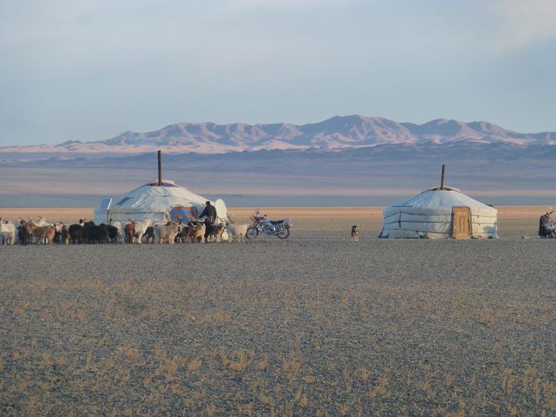 Normaden in der Wüste Gobi
